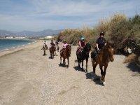 骑马在莫特里尔海滩3小时