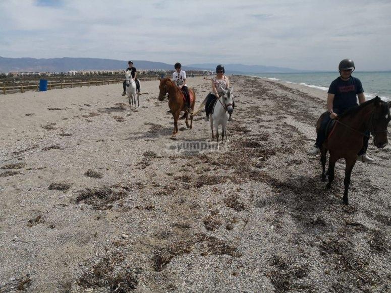 Roquetas de Mar儿童骑马游览