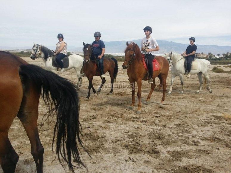 Roquetas带孩子骑马
