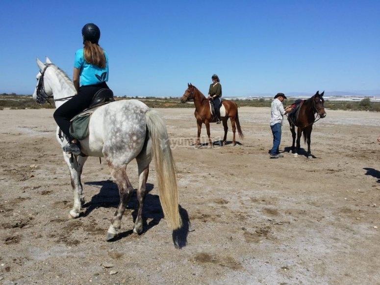阿尔梅里亚省海滩家庭骑马