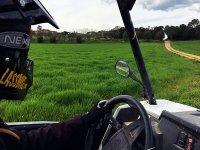 Conduciendo el buggy