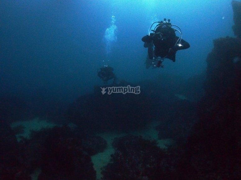 在坎塔布连潜水
