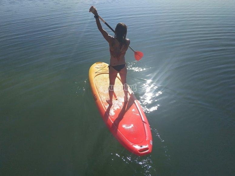 在Cordovan水域进行划桨冲浪