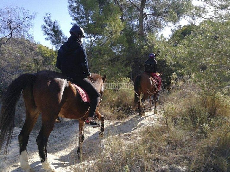 骑马的Villajoyosa步道