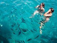 Saludando a los peces