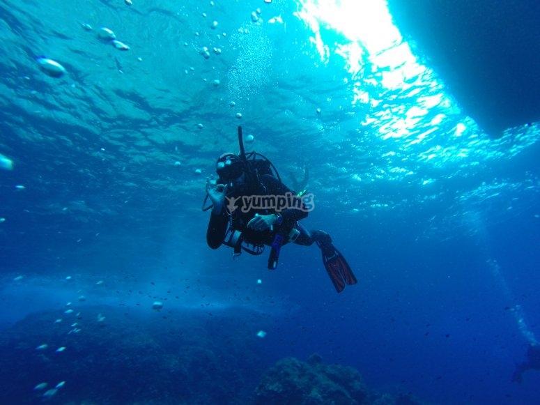 第一次潜水瓦伦西亚的潜水