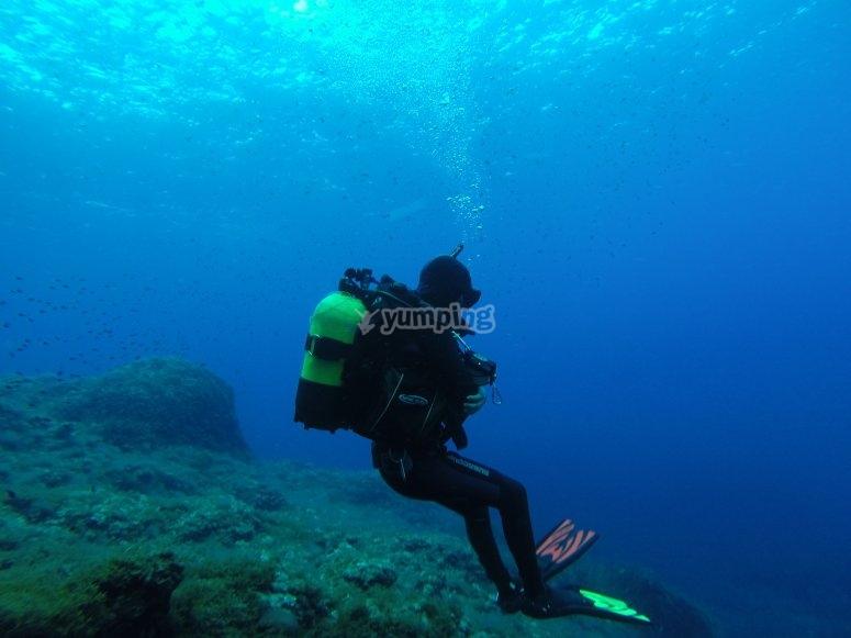 瓦伦西亚潜水