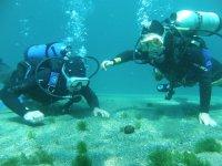 鲍斯蒂莫在瓦伦西亚港口潜水