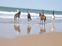 cuatro personas montando a caballo