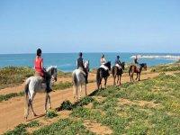 骑马与海在背景中