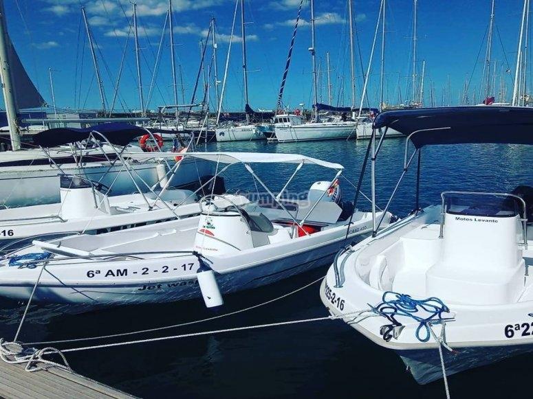 Alquiler barco Galia 450 en Valencia