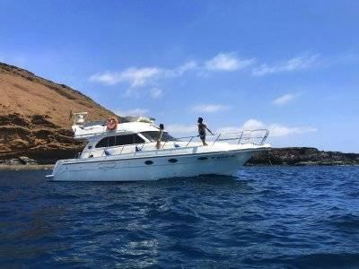 2 inmersiones de buceo desde yate en Arona 5h