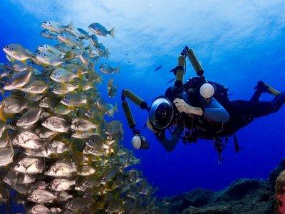 Pack de 6 inmersiones de buceo desde yate en Arona