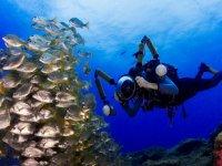 Inmersión de buceo fotografía Arona