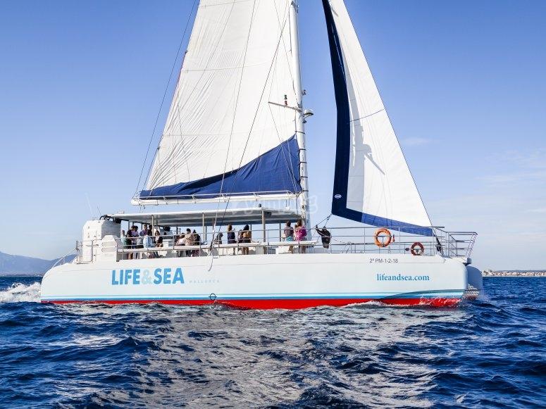 Giro in catamarano attraverso le acque di Maiorca