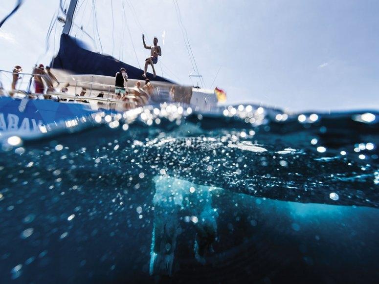 Giornata acquatica a Maiorca in sella a un catamarano