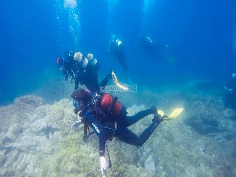 Inmersión en aguas abiertas Scuba Diver