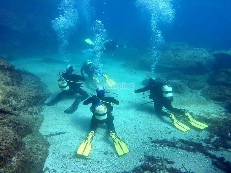 巴塞罗那专业潜水课程