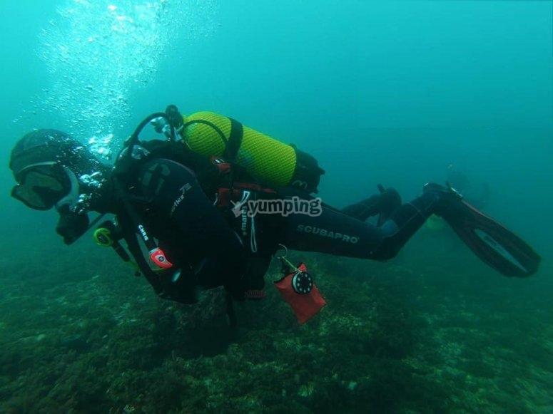 潜水课程-普拉亚伯纳纳