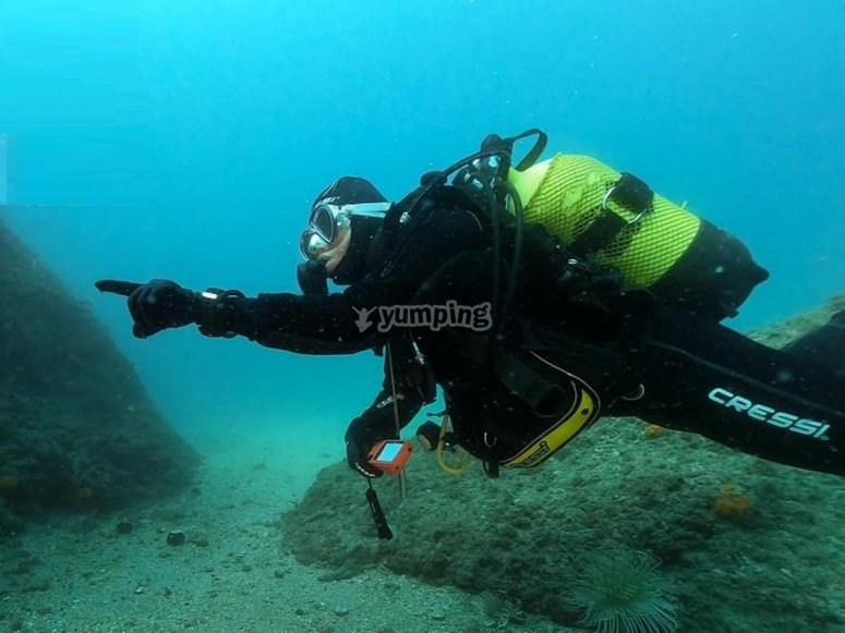 专业潜水教练内尔哈