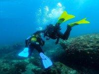 高级开放水域潜水员称号