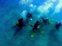 Alumnos de buceo en el fondo del mar