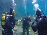 En el fondo marino durante el curso de buceo