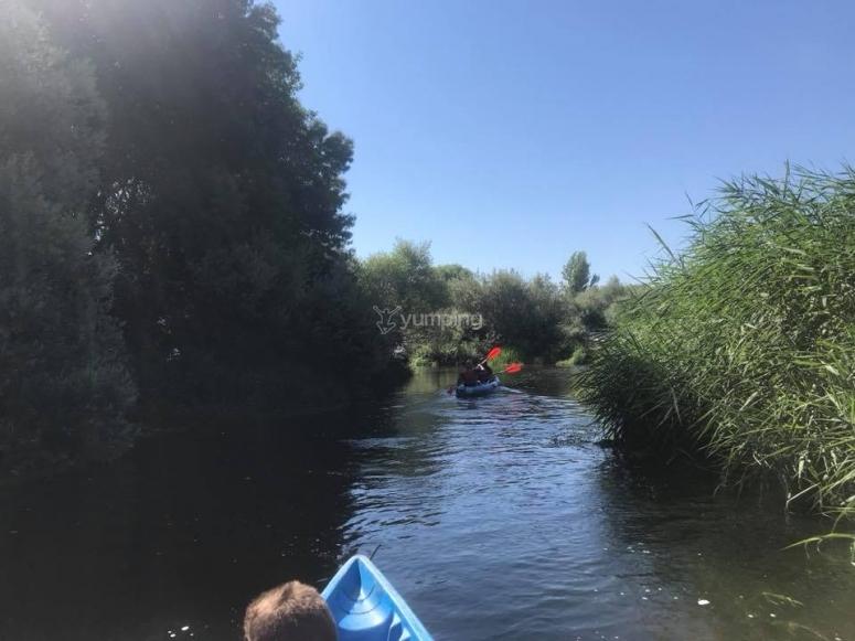 独木舟旅行在托梅斯河