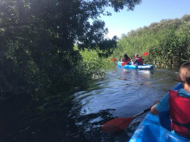独木舟团体萨拉曼卡