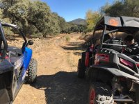 Excursión en buggy biplaza Sevilla 2 horas