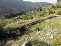 En la Sierra de Castril