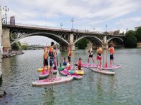 Tour Paddle Surf Sevilla sin instructor 1h 30min