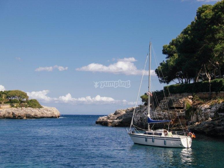 Paseo en barco y baño en cala Mallorca