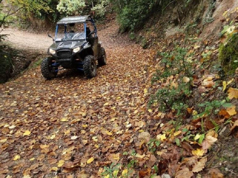 Ruta en buggy por Montenartró