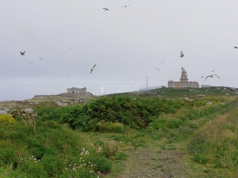 Faro en las Illas Sisargas