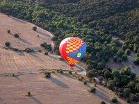 Flight over natural landscape