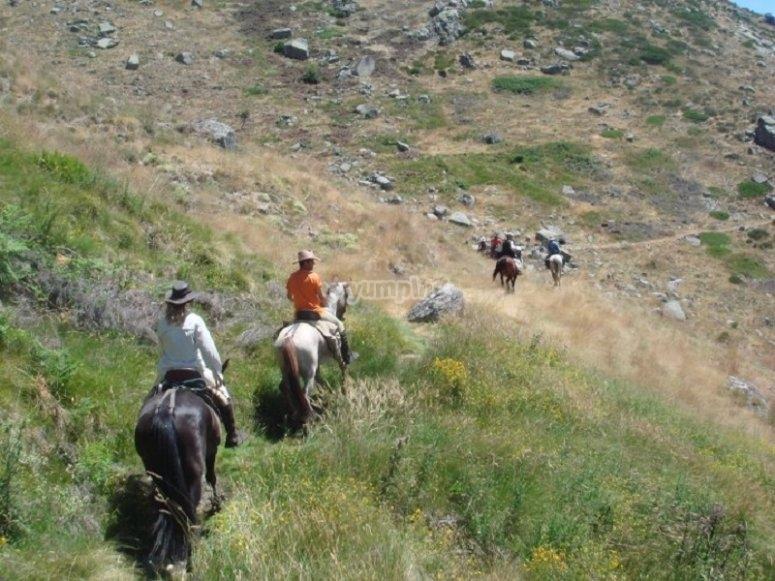 Ruta sierra de Gredos a caballo
