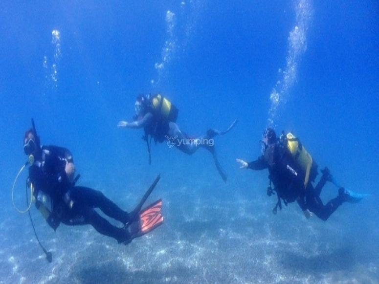 我们的显示器将继续您在马拉加的高级潜水