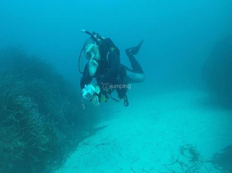 卡拉德尔道德的强烈潜水日道德