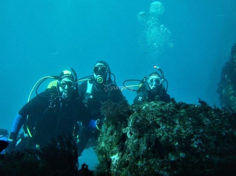 马拉加水下摄影潜水日