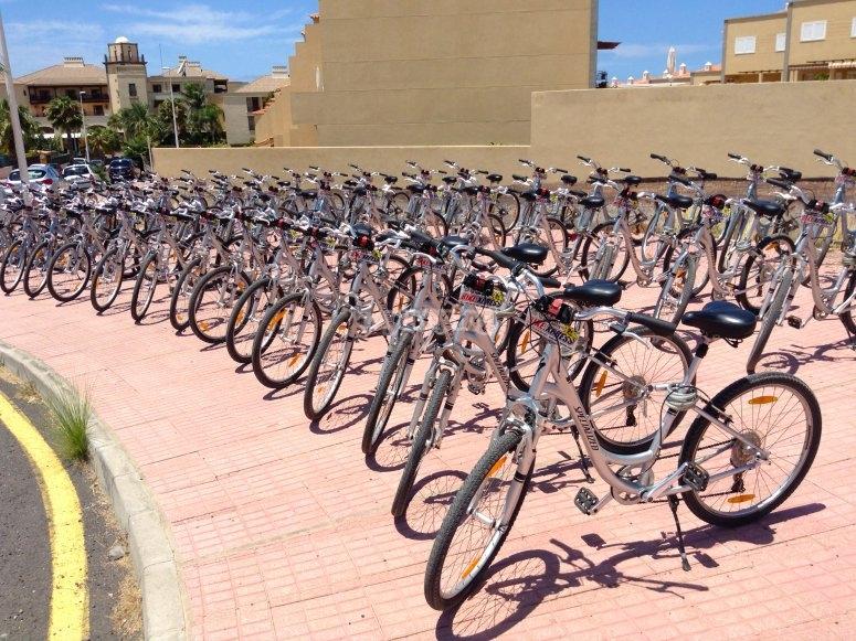 Bike ride rental