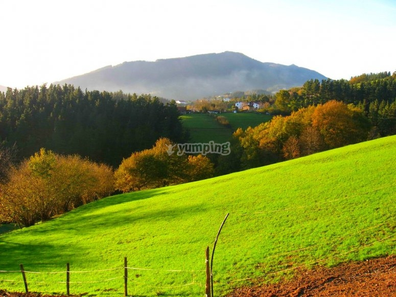Ride in 4x4 green meadows of the Basque Country