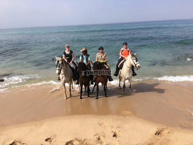 博洛尼亚的骑马