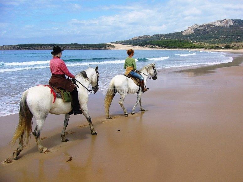 骑马沿着海滩骑马