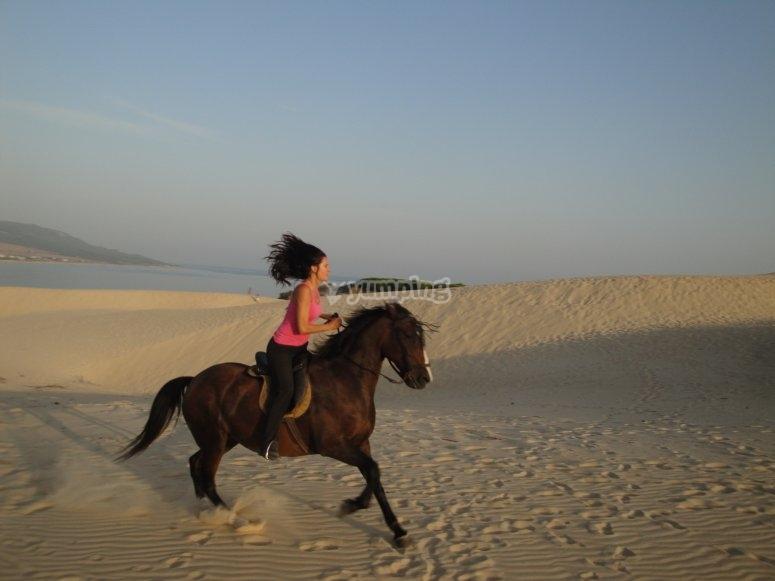 与塔里法海滩骑马