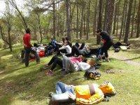 Descansando en el bosque