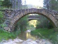 Molinactiva landscape