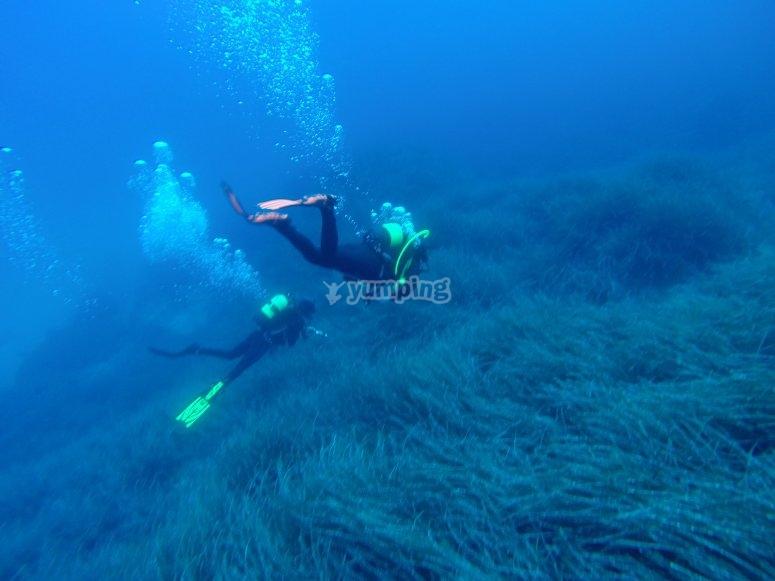 在福门特拉岛(Formentera)潜水