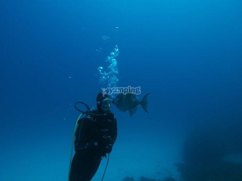 浸入潜水设备