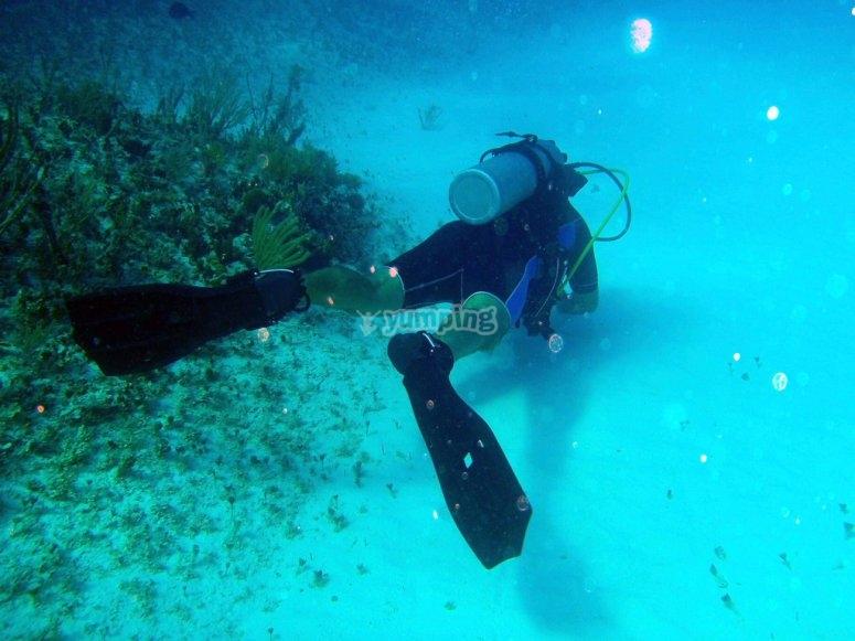 Curso PADI de buceo en Formentera